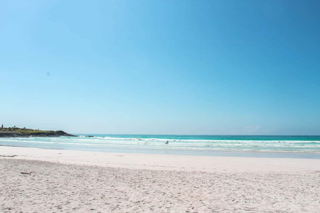 Tortuga Bay is a budget friendly activity on the Galapagos