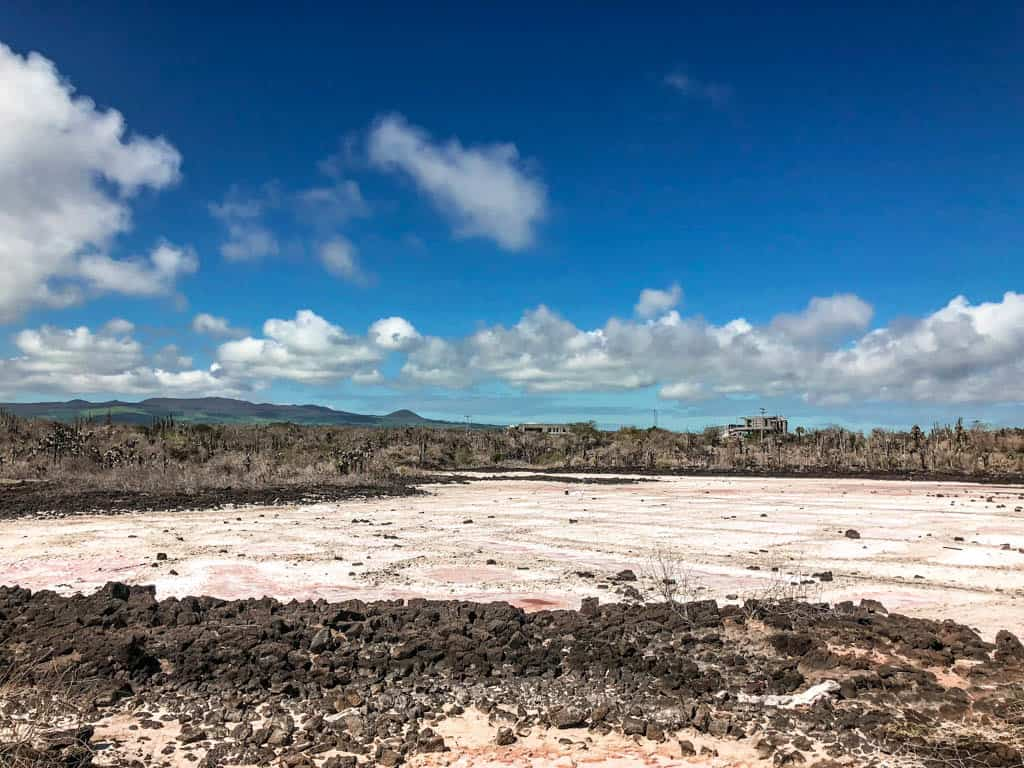 Salt Flats on the Galapagos Islands