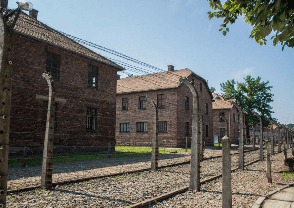 rows of barracks at auschwitz