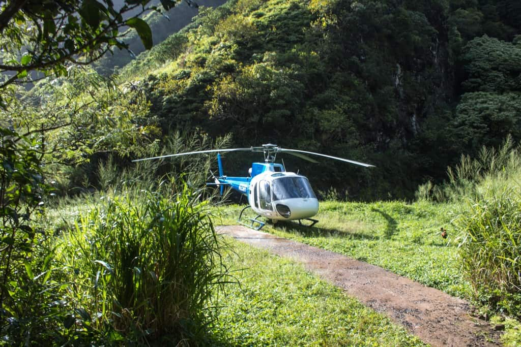 Jurassic Falls Helicopter Tour with Island Helicopters