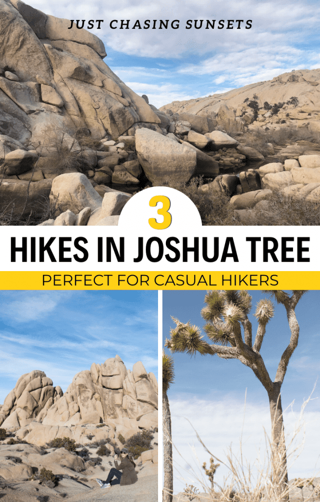 3 Hikes in Joshua Tree for Casual Hikers