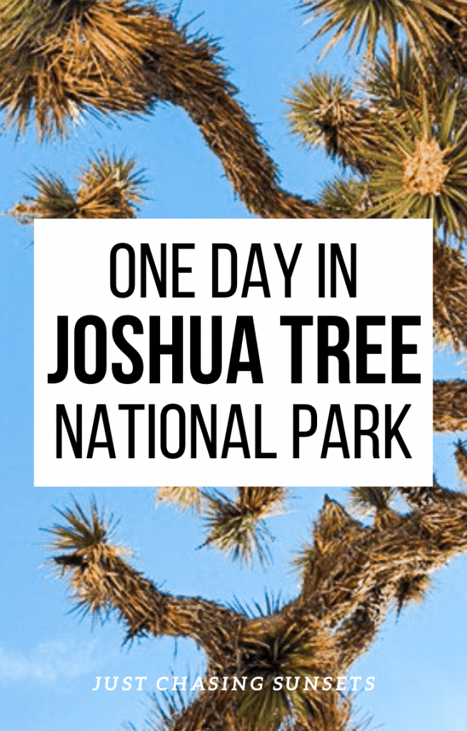 One day in Joshua Tree National Park