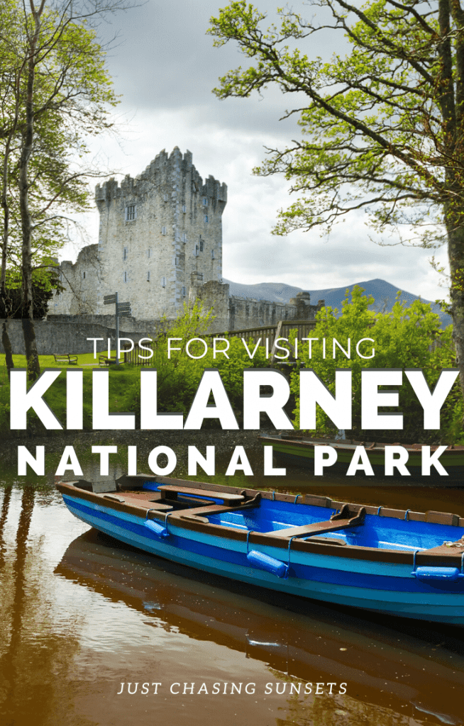Tips for visiting Killarney National Park