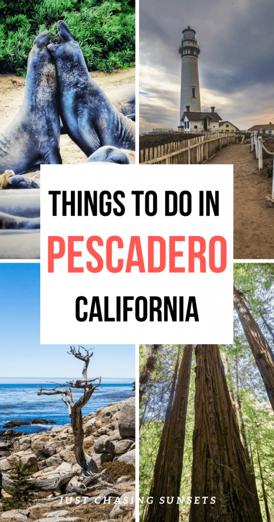 Things to do in Pescadero California