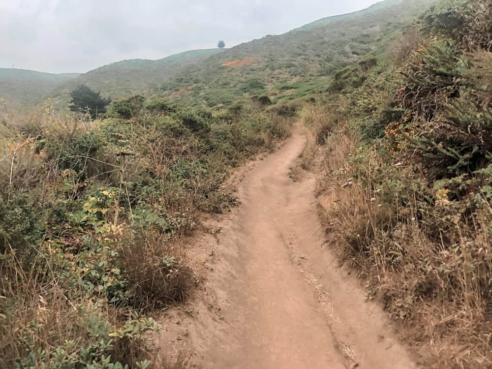 Start of the Gray Whale Cove Trail in Half Moon Bay, CA